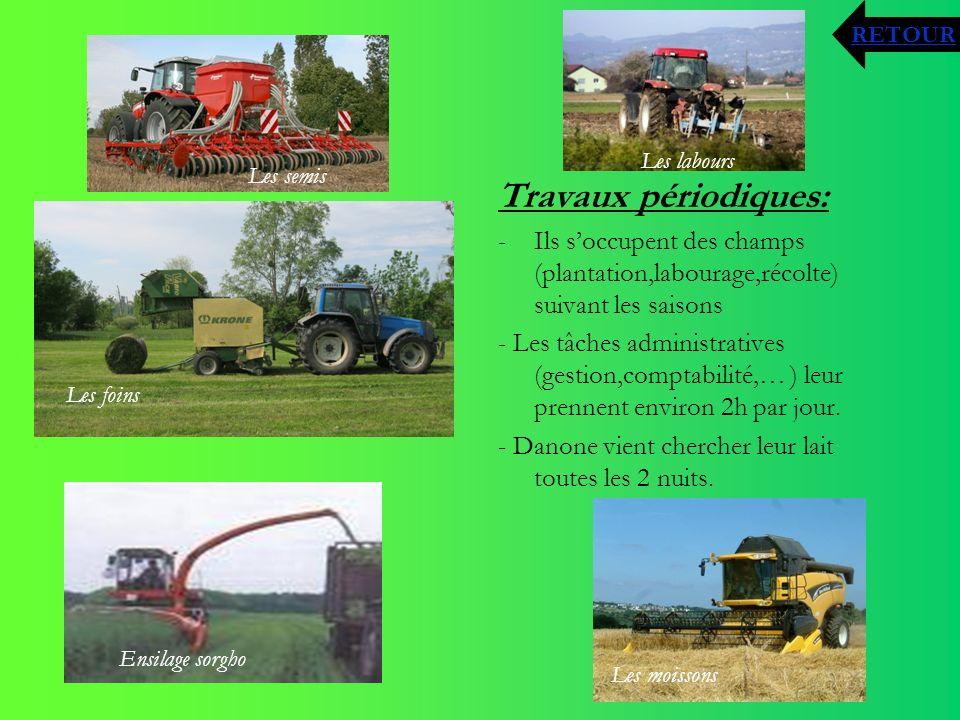 RETOUR Les labours. Les semis. Travaux périodiques: Ils s'occupent des champs (plantation,labourage,récolte) suivant les saisons.