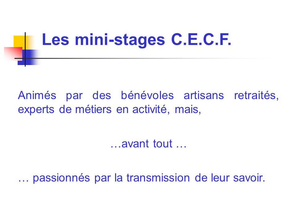 Les mini-stages C.E.C.F. Animés par des bénévoles artisans retraités, experts de métiers en activité, mais,