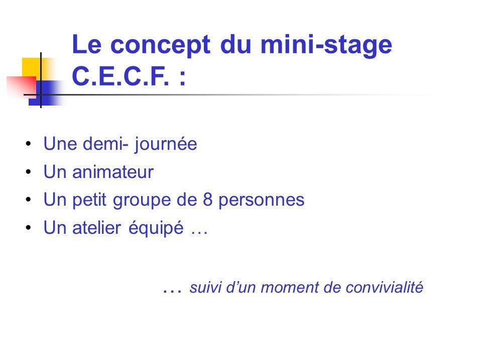 Le concept du mini-stage C.E.C.F. :