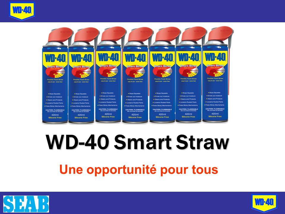 WD-40 Smart Straw Une opportunité pour tous