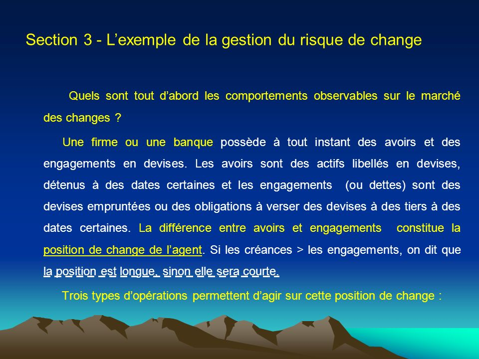 Section 3 - L'exemple de la gestion du risque de change