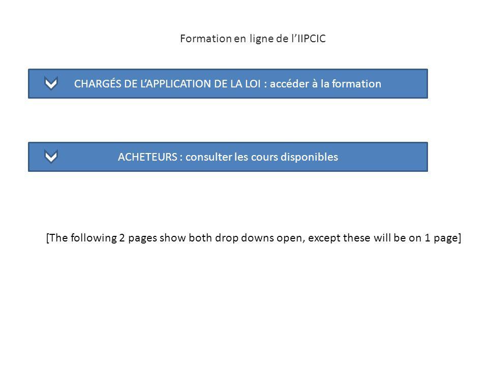 Formation en ligne de l'IIPCIC
