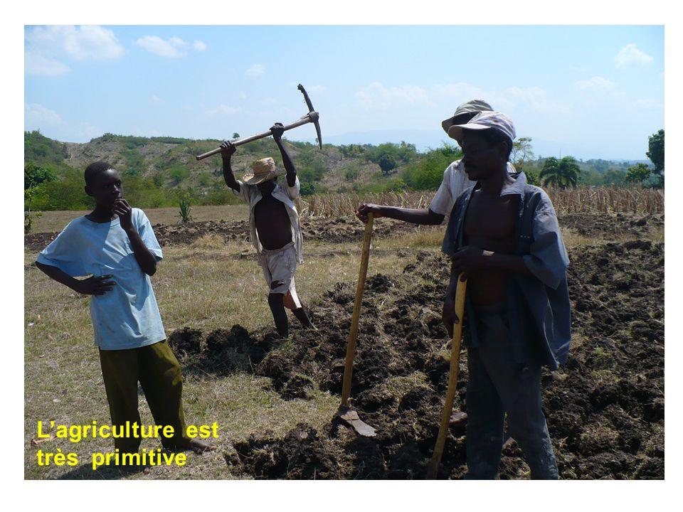 L'agriculture est très primitive