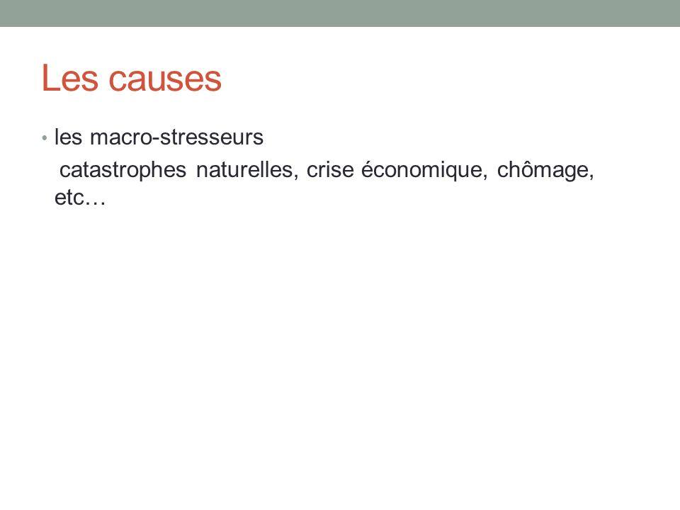 Les causes les macro-stresseurs