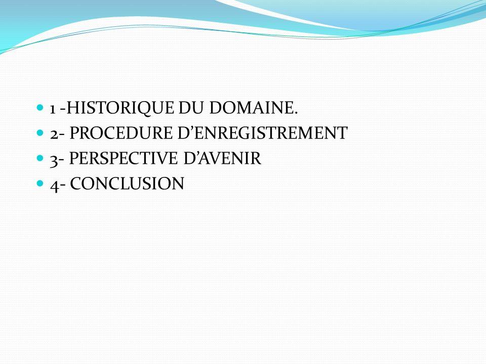 1 -HISTORIQUE DU DOMAINE.
