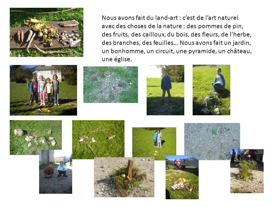 Nous avons fait du land-art : c'est de l'art naturel avec des choses de la nature : des pommes de pin, des fruits, des cailloux, du bois, des fleurs, de l'herbe, des branches, des feuilles… Nous avons fait un jardin, un bonhomme, un circuit, une pyramide, un château, une église.