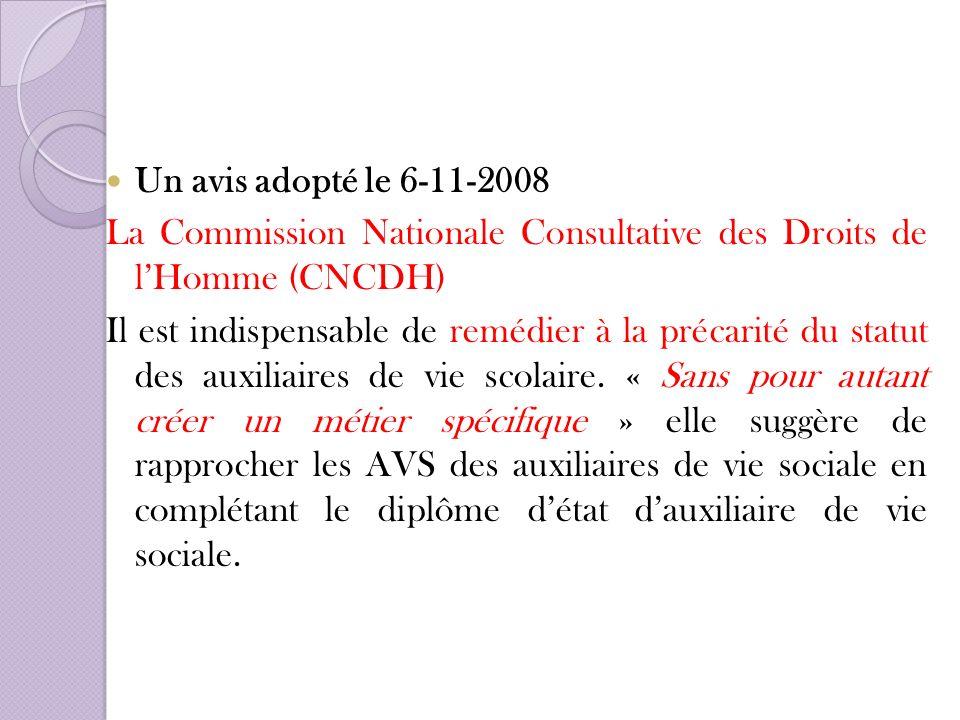 Un avis adopté le 6-11-2008 La Commission Nationale Consultative des Droits de l'Homme (CNCDH)