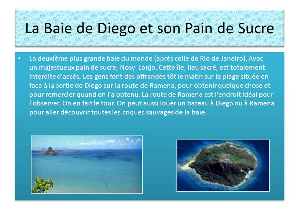 La Baie de Diego et son Pain de Sucre