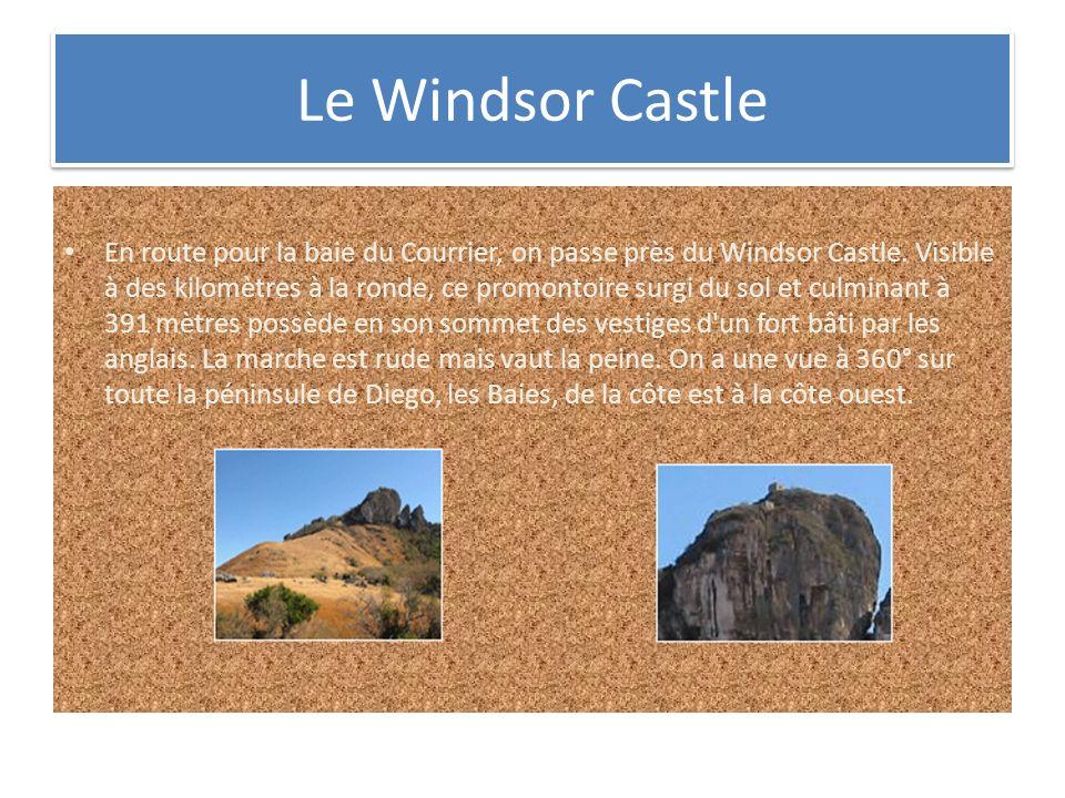 Le Windsor Castle
