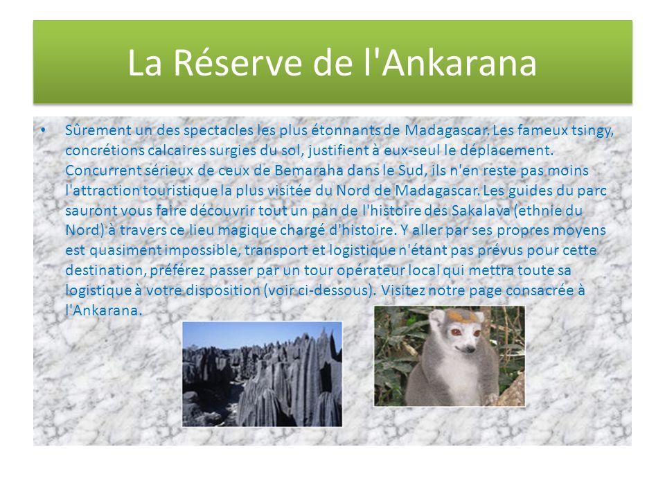 La Réserve de l Ankarana