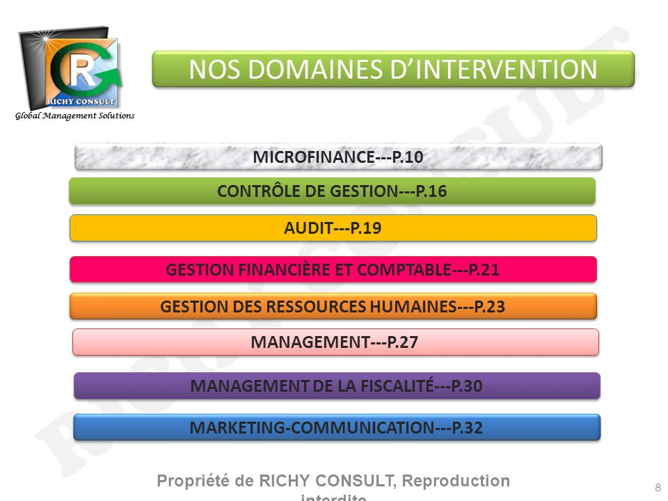 RICHY CONSULT NOS DOMAINES D'INTERVENTION MICROFINANCE---P.10