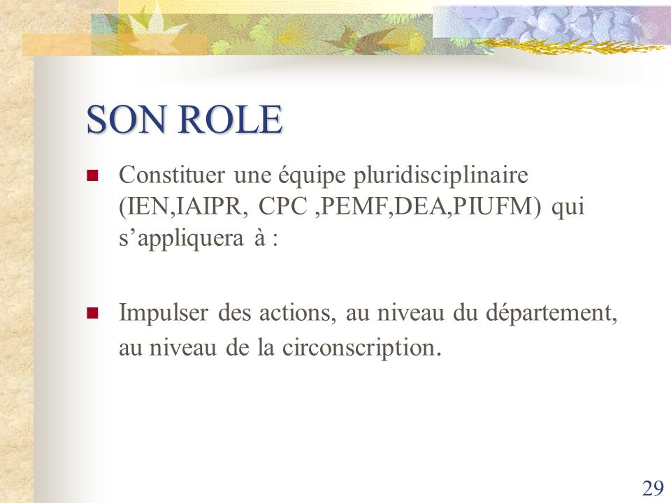 SON ROLE Constituer une équipe pluridisciplinaire (IEN,IAIPR, CPC ,PEMF,DEA,PIUFM) qui s'appliquera à :