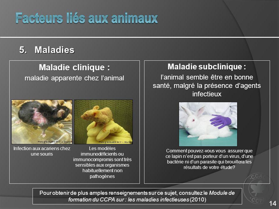 Facteurs liés aux animaux