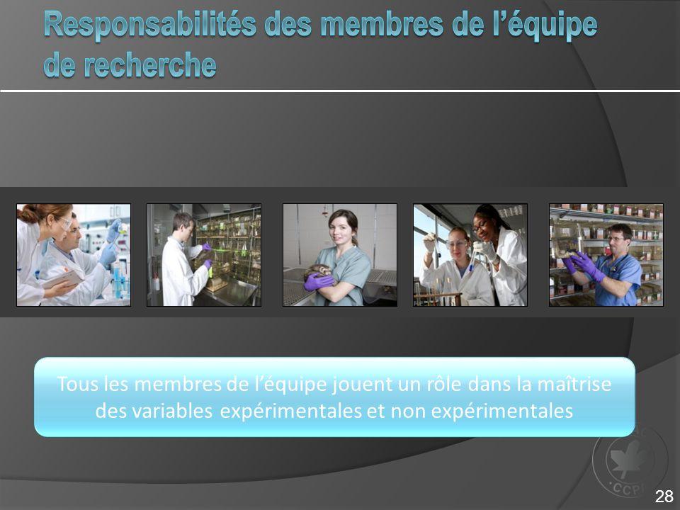Responsabilités des membres de l'équipe de recherche