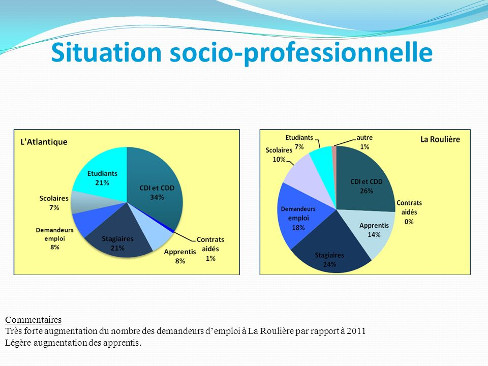 Situation socio-professionnelle