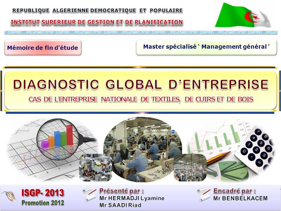 ISGP- 2013 Promotion 2012 DIAGNOSTIC GLOBAL D'ENTREPRISE