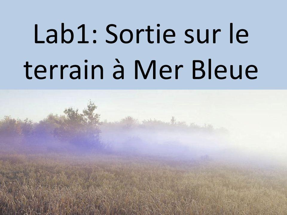 Lab1: Sortie sur le terrain à Mer Bleue