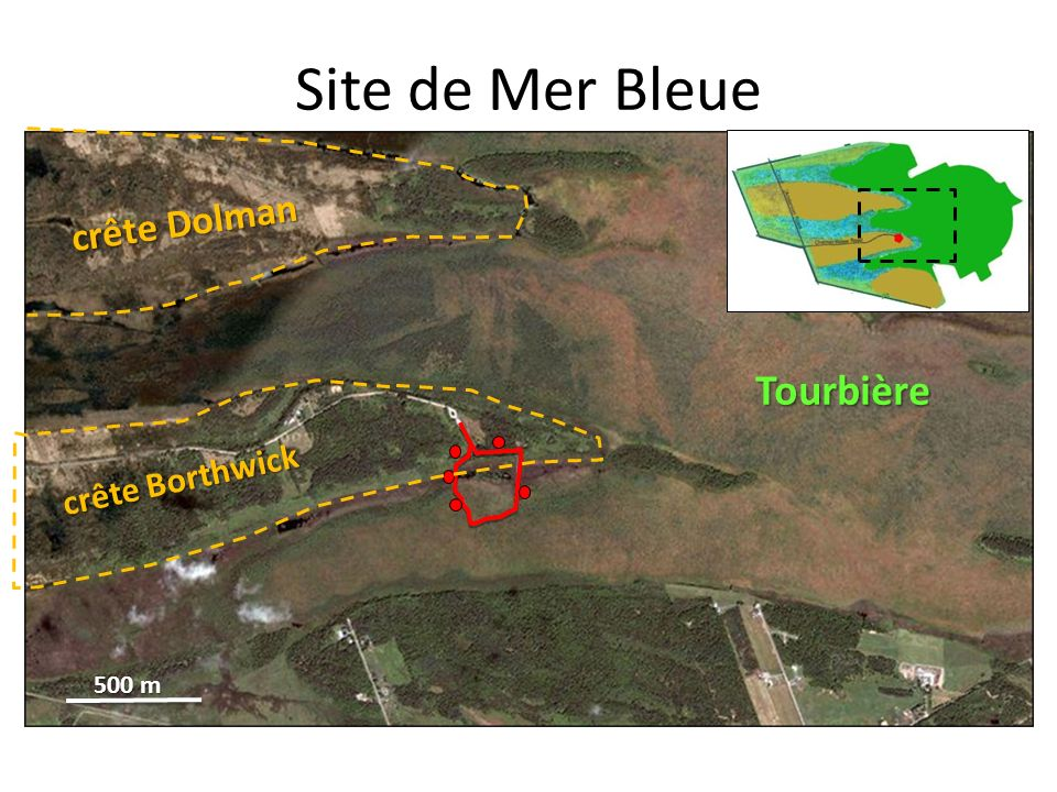 Site de Mer Bleue crête Dolman Tourbière crête Borthwick 500 m