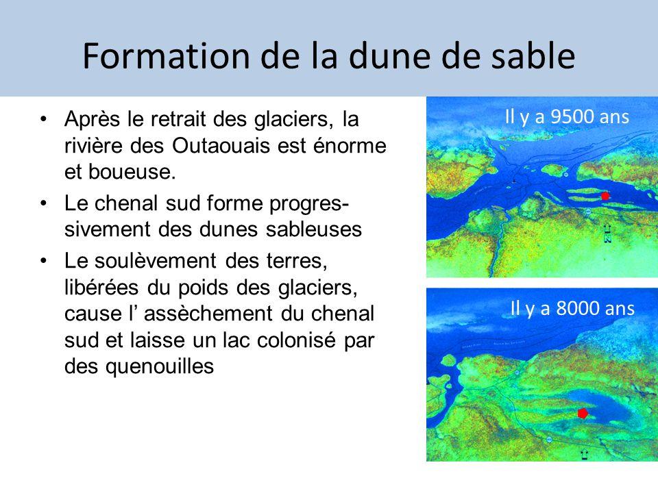 Formation de la dune de sable