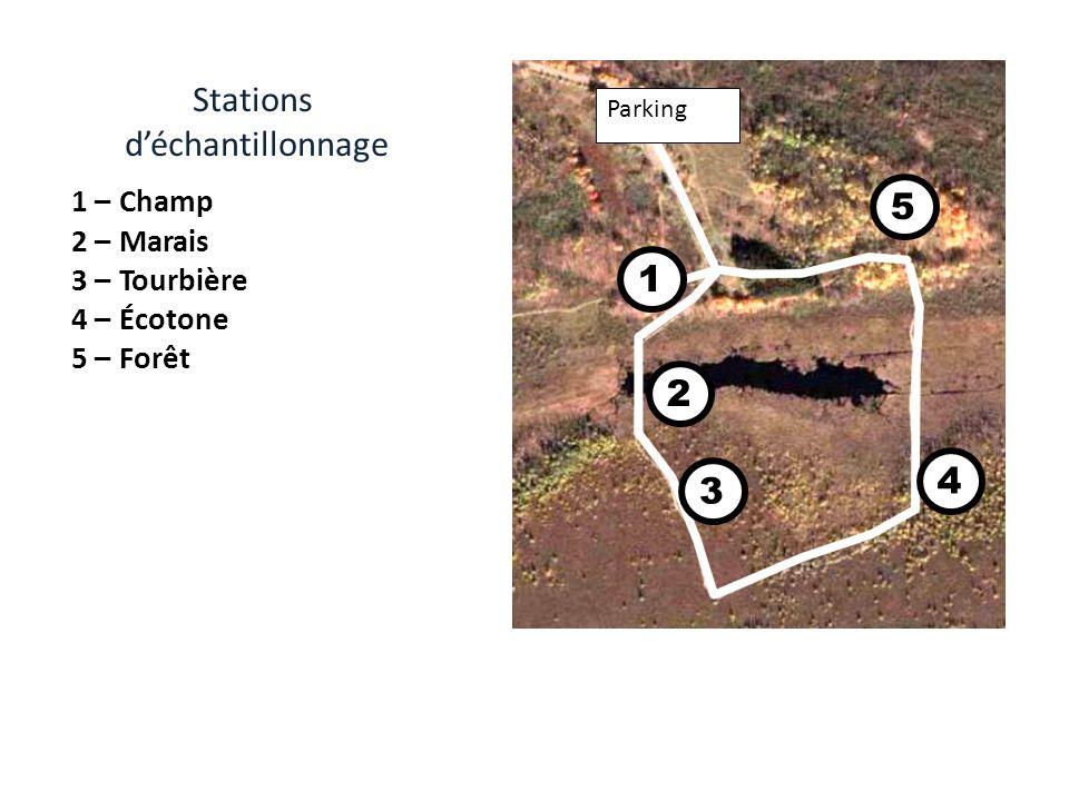 Stations d'échantillonnage