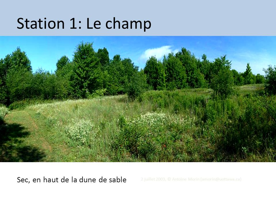 Station 1: Le champ Sec, en haut de la dune de sable Tue 13 Aug 2013