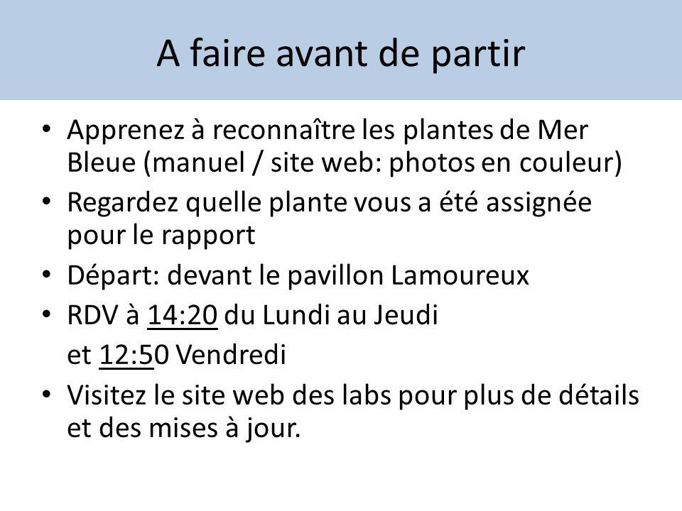 A faire avant de partir Apprenez à reconnaître les plantes de Mer Bleue (manuel / site web: photos en couleur)
