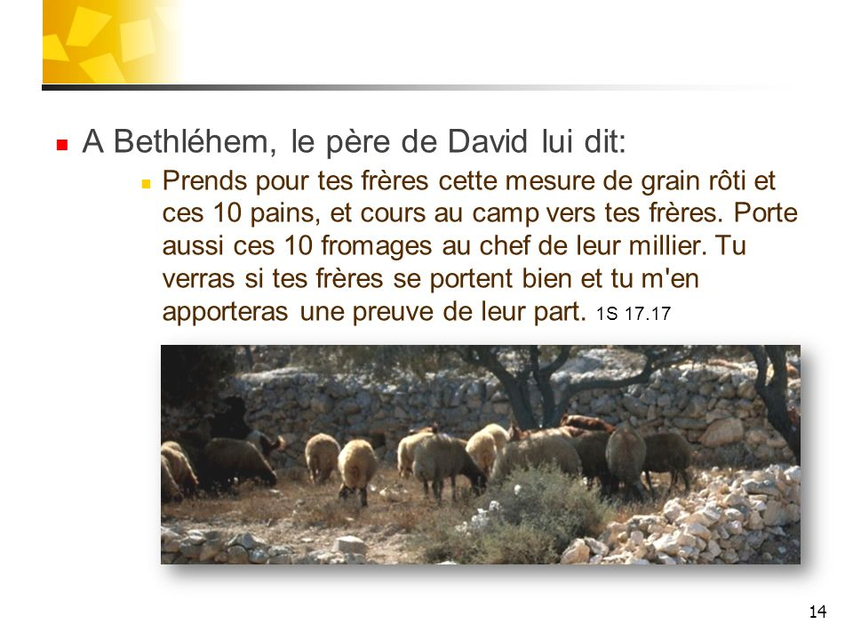 A Bethléhem, le père de David lui dit: