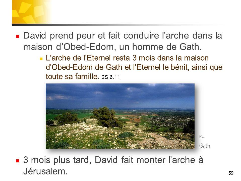 3 mois plus tard, David fait monter l'arche à Jérusalem.