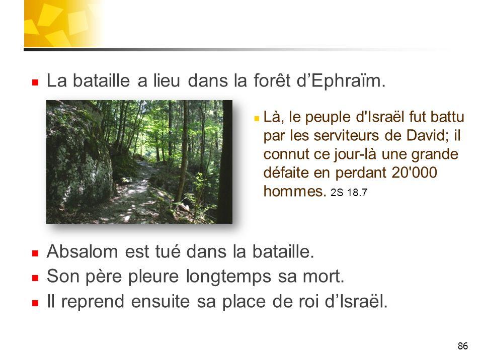 La bataille a lieu dans la forêt d'Ephraïm.