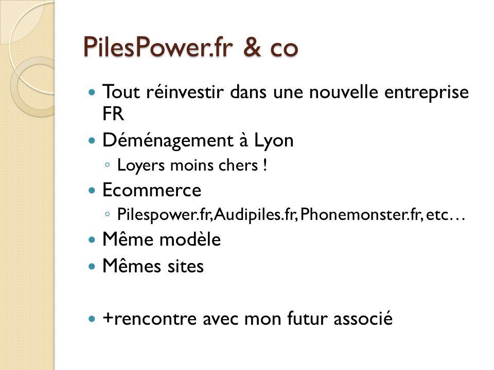 PilesPower.fr & co Tout réinvestir dans une nouvelle entreprise FR
