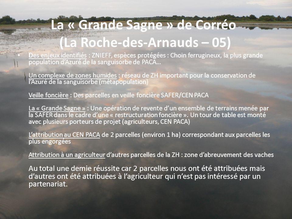 La « Grande Sagne » de Corréo (La Roche-des-Arnauds – 05)