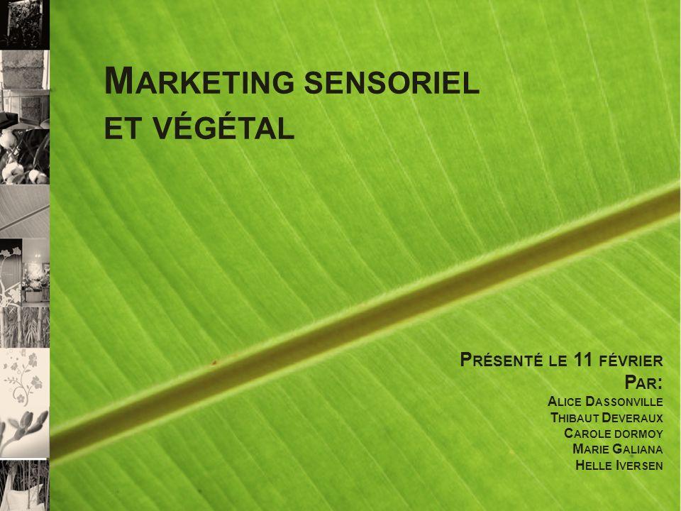 Marketing sensoriel et végétal Présenté le 11 février Par: