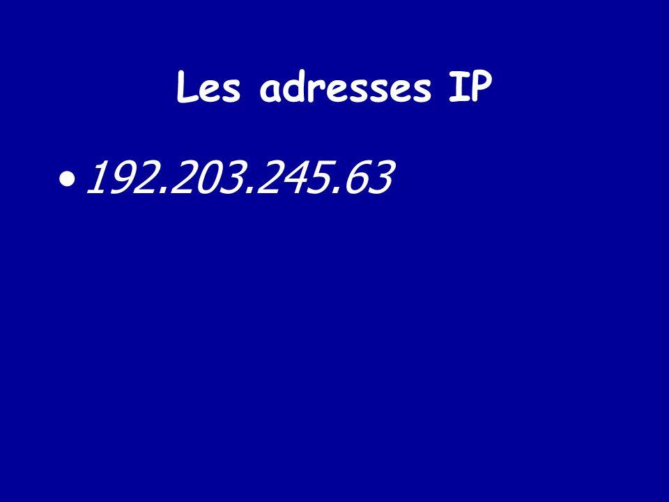 Les adresses IP 192.203.245.63