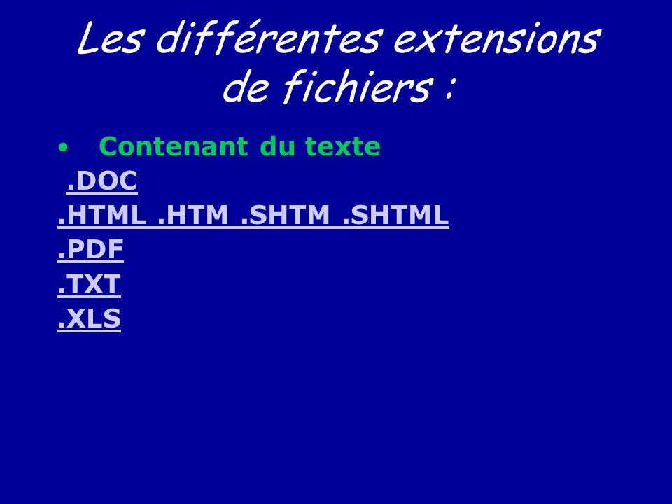 Les différentes extensions de fichiers :