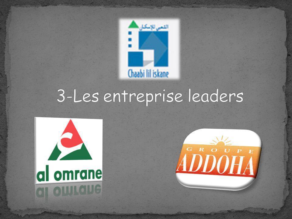 3-Les entreprise leaders