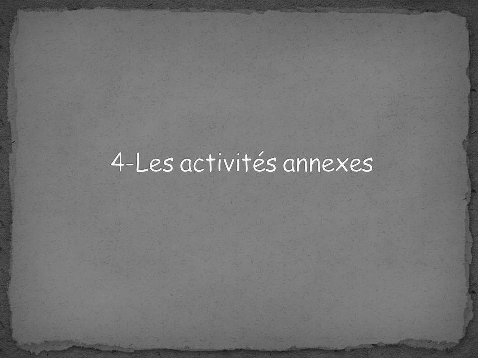 4-Les activités annexes