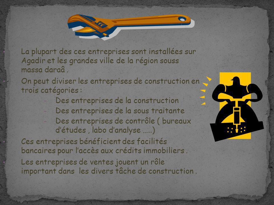 La plupart des ces entreprises sont installées sur Agadir et les grandes ville de la région souss massa daraâ .
