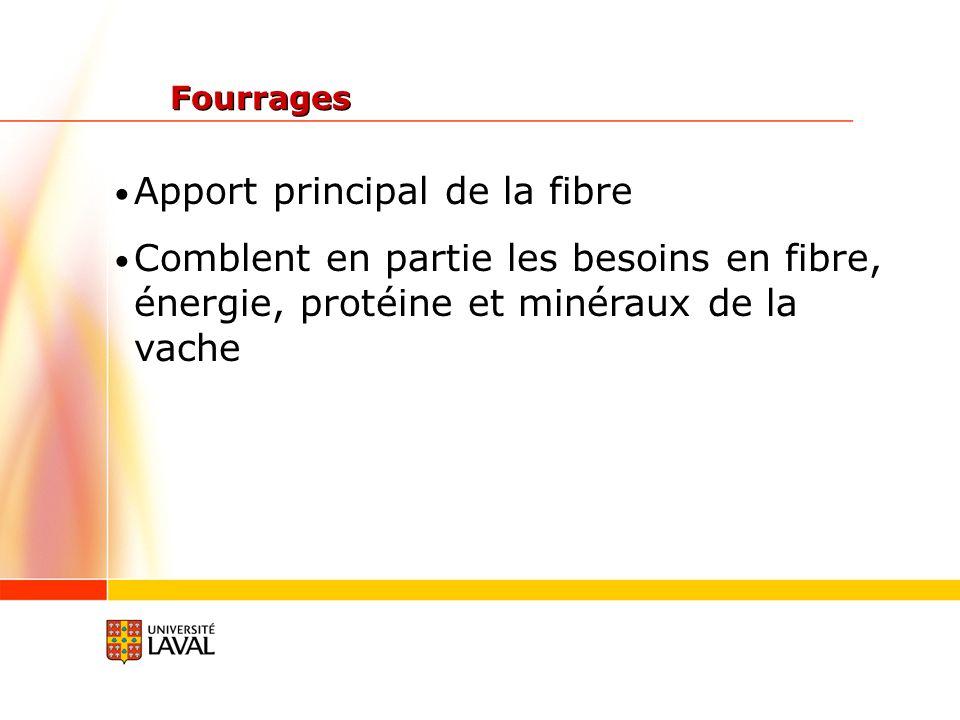 Apport principal de la fibre
