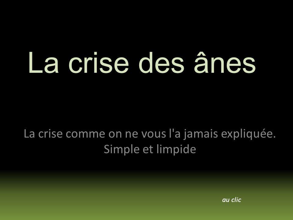 La crise comme on ne vous l a jamais expliquée. Simple et limpide