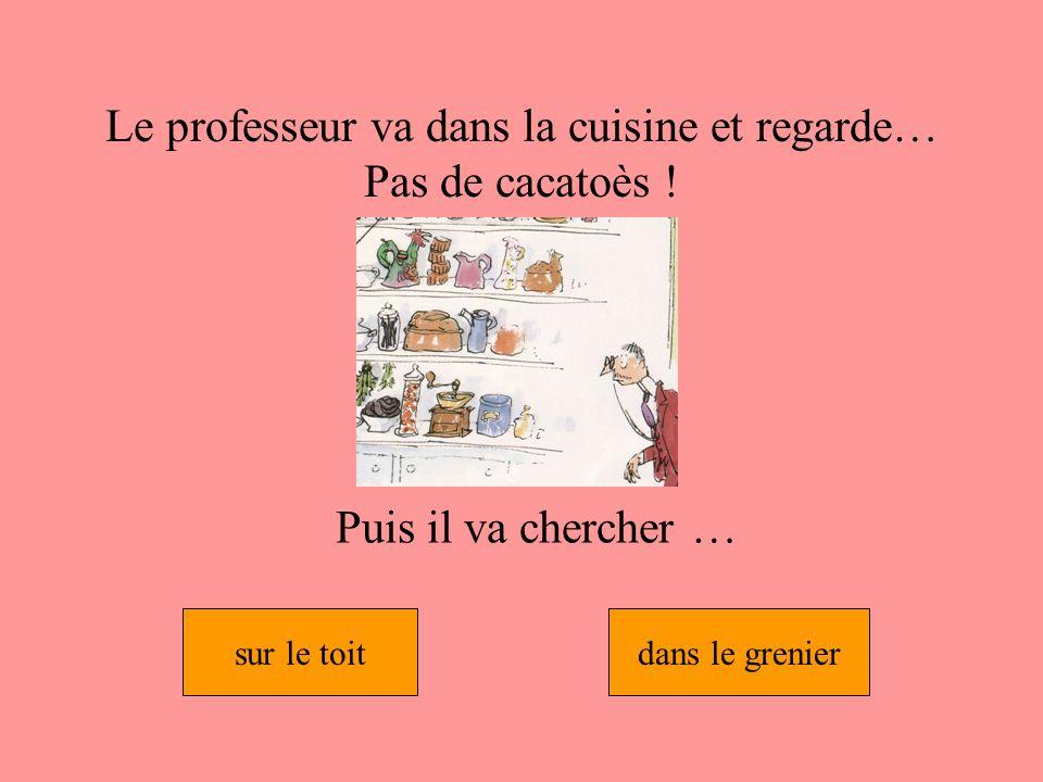 Le professeur va dans la cuisine et regarde… Pas de cacatoès !