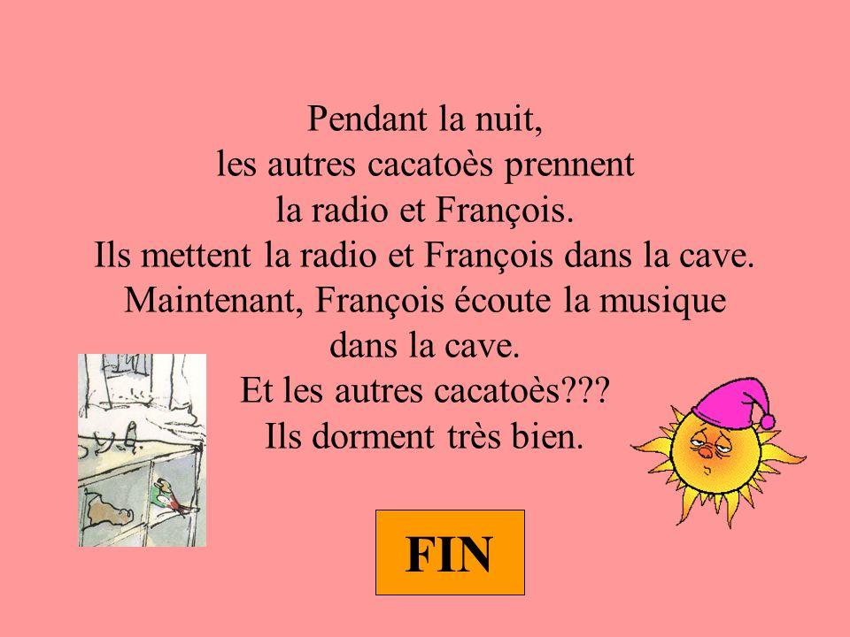 Pendant la nuit, les autres cacatoès prennent la radio et François