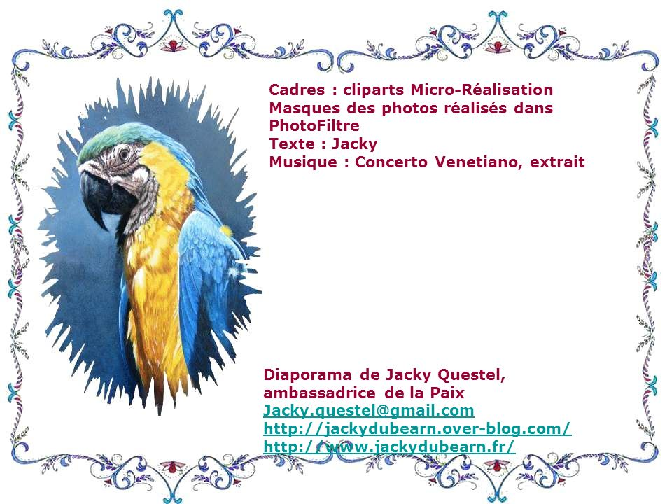 Cadres : cliparts Micro-Réalisation Masques des photos réalisés dans PhotoFiltre Texte : Jacky Musique : Concerto Venetiano, extrait