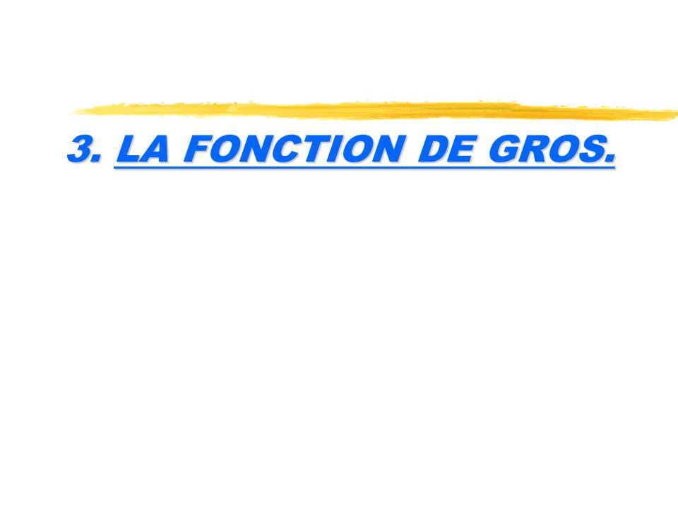 3. LA FONCTION DE GROS.