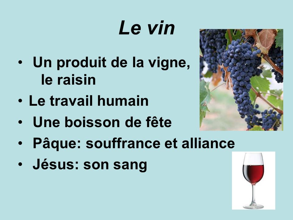 Le vin Un produit de la vigne, le raisin Le travail humain
