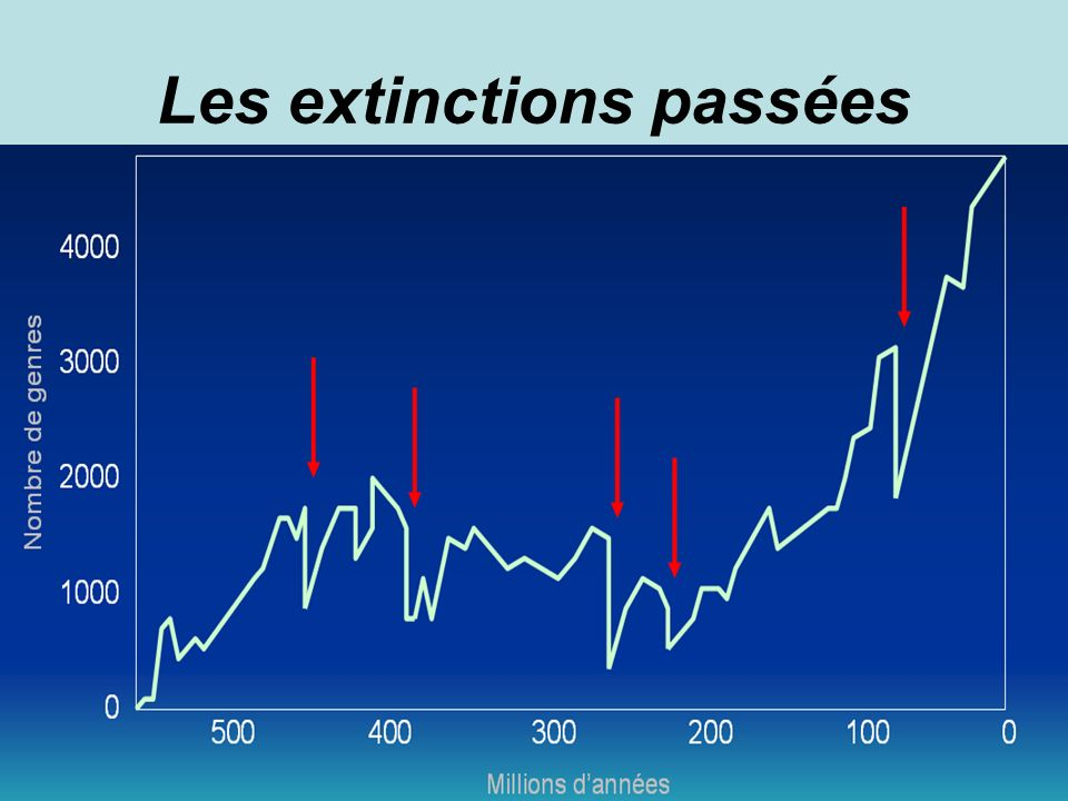 Les extinctions passées