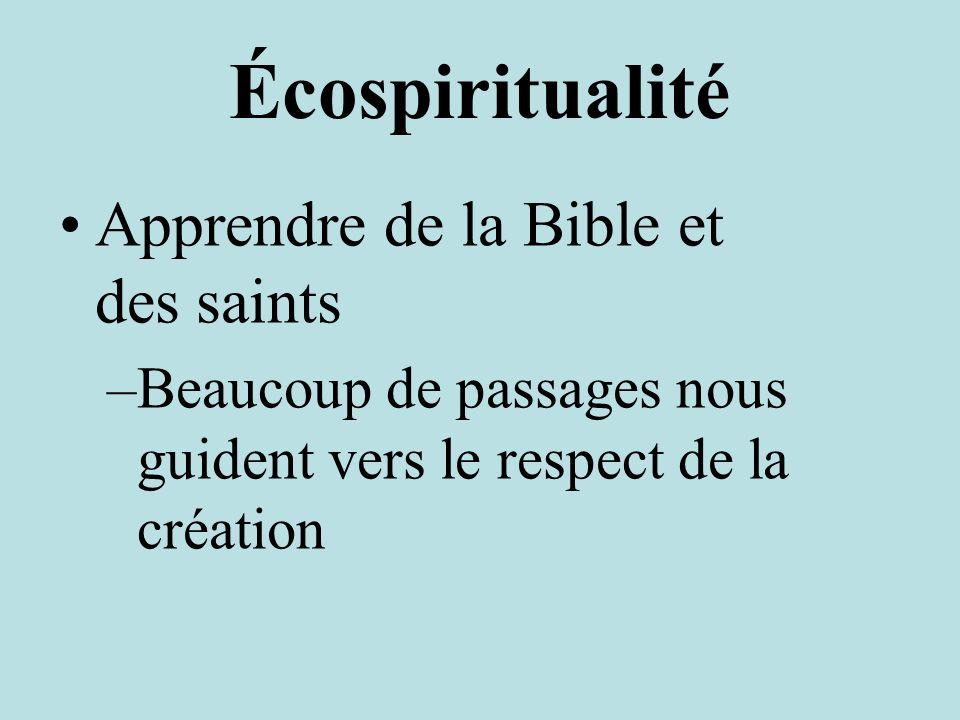 Écospiritualité Apprendre de la Bible et des saints