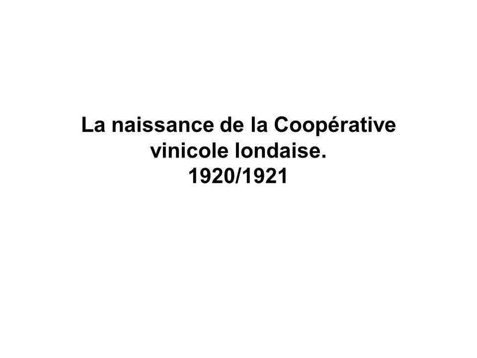 La naissance de la Coopérative vinicole londaise. 1920/1921