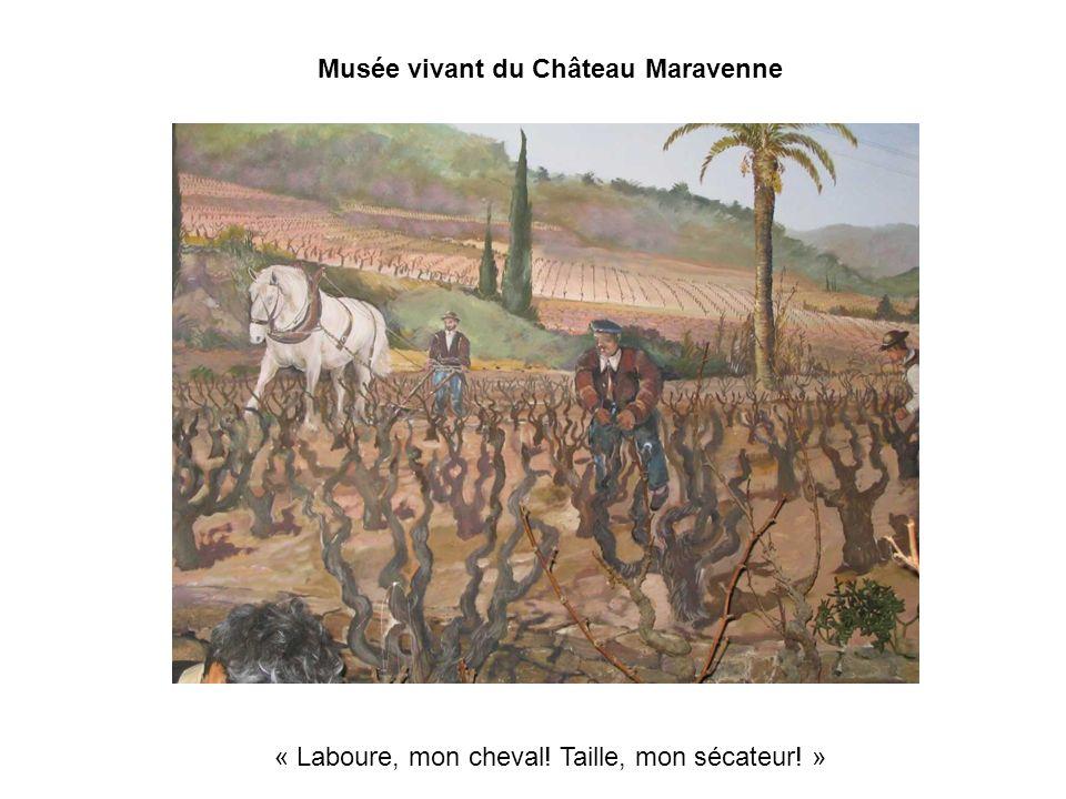 Musée vivant du Château Maravenne