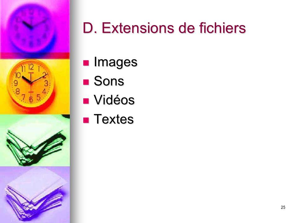 D. Extensions de fichiers