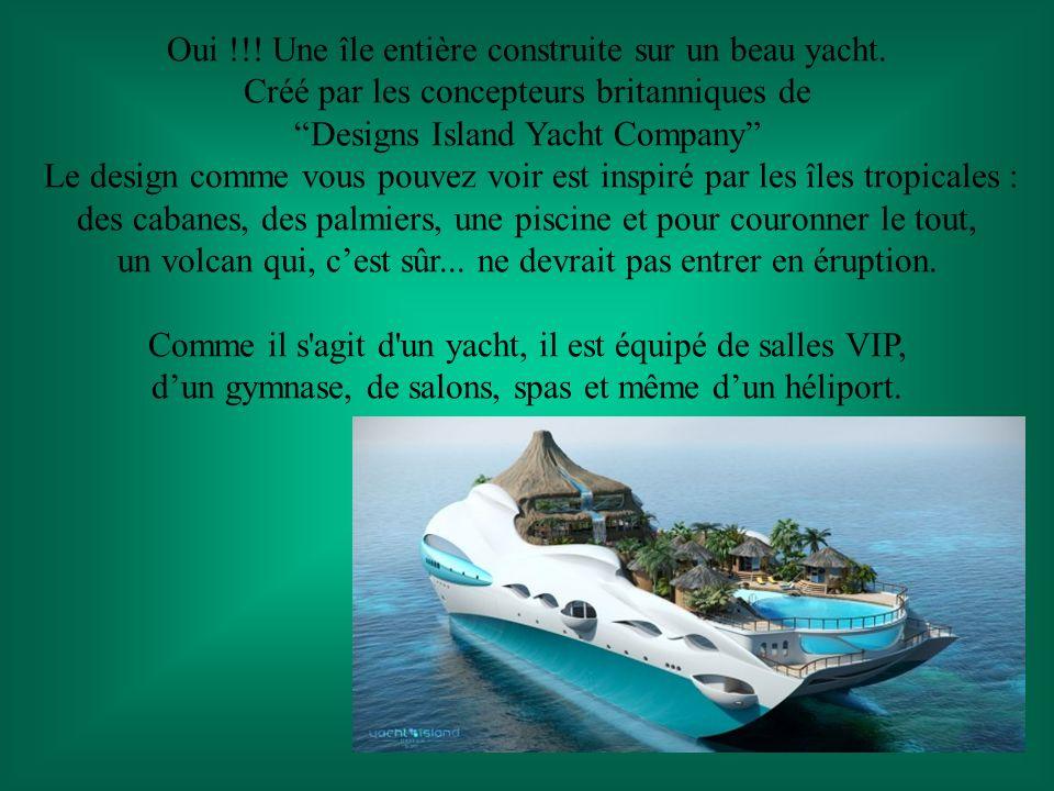 Oui !!! Une île entière construite sur un beau yacht.